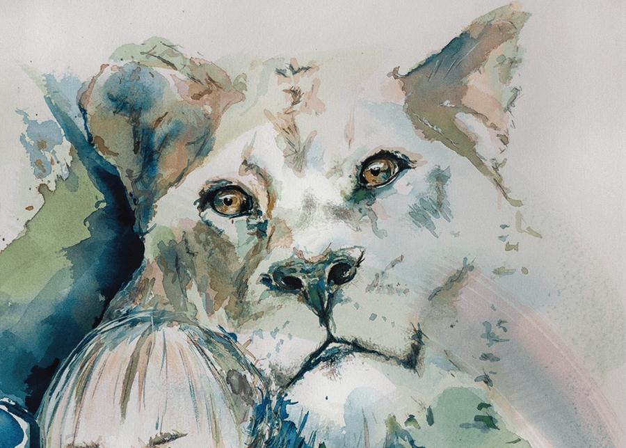 Ute Bescht - Portrait Aquarell und Tusche- Tier und Mensch